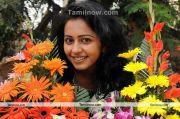 Rakul Preet New Photo