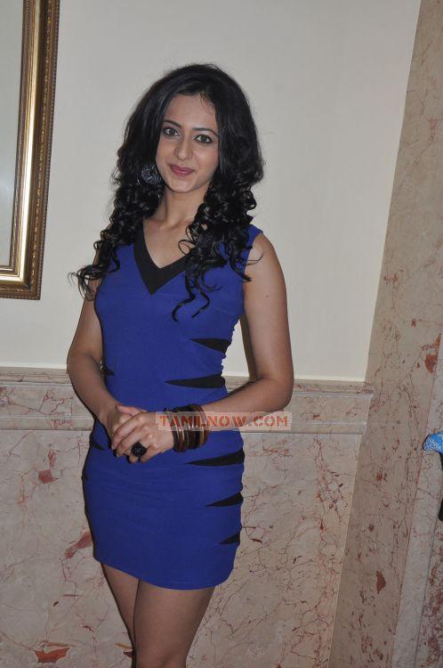 Tamil Actress Rakul Preet 9904