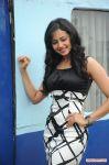 Rakul Preeth Singh Stills 249