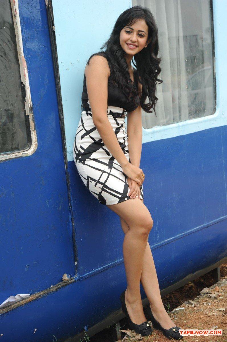 Tamil Actress Rakul Preeth Singh Photos 3660