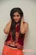 Albums Tamil Heroine Rashmi Gautam 2112