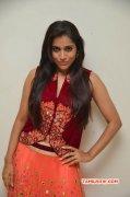 Photos Rashmi Gautam Tamil Heroine 5016