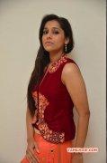 Recent Galleries Rashmi Gautam Tamil Actress 2055
