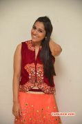 Tamil Movie Actress Rashmi Gautam Recent Galleries 5159