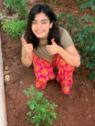 New Picture Rashmika Mandanna Heroine 5318