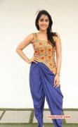 Album Tamil Actress Regina 8161