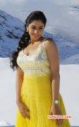 Latest Wallpaper Regina Indian Actress 7337