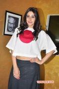 Regina Indian Actress Latest Images 5006