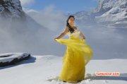 Regina Tamil Actress 2015 Pics 9224