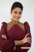 Regina Tamil Movie Actress Nov 2014 Picture 525