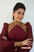 Tamil Movie Actress Regina 2014 Image 1590
