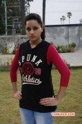 Wallpapers Reshma Rathore Cinema Actress 8668
