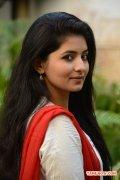 Tamil Actress Reshmi Menon 7472