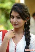 Tamil Actress Reshmi Menon 8246