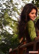 Tamil Actress Reshmi Menon Photos 7077