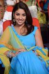 Richa Gangopadhyay Stills 3531