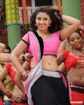 Tamil Actress Richa Gangopadhyay 8036