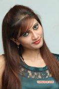 2014 Pictures Tamil Heroine Rishika 3175