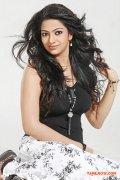 Actress Saaraa Chetti 8386