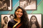 Sai Pallavi Actress Recent Album 6046
