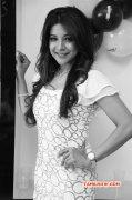 2017 Gallery Sakshi Agarwal South Actress 3769