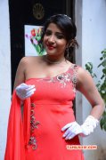 Film Actress Sakshi Agarwal Latest Photo 8028