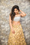 Recent Pic South Actress Sakshi Agarwal 4013