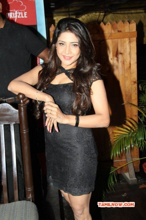 Sakshi Agarwal Movie Actress Latest Albums 8190