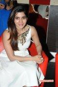 2014 Still Tamil Heroine Samantha 6427