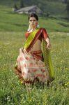 Actress Samanta Image 861