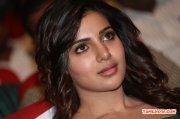 Actress Samantha 7550