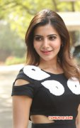 Latest Wallpapers Samantha Tamil Movie Actress 9034