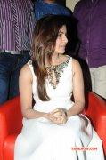 Samantha Indian Actress 2014 Albums 2477
