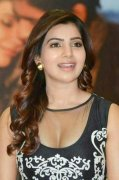 Samantha Indian Actress Latest Gallery 4161