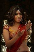 Samantha Tamil Heroine Latest Gallery 9063