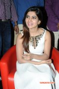 Samantha Tamil Movie Actress Recent Pic 4572