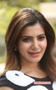 Tamil Actress Samantha 2014 Picture 1372