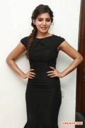 Tamil Actress Samantha 2940