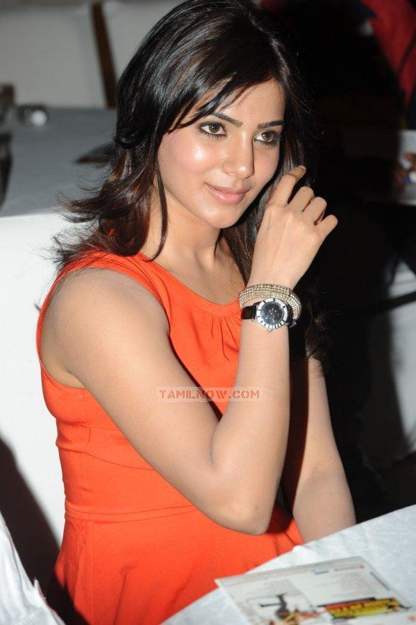 Tamil Actress Samantha 3131