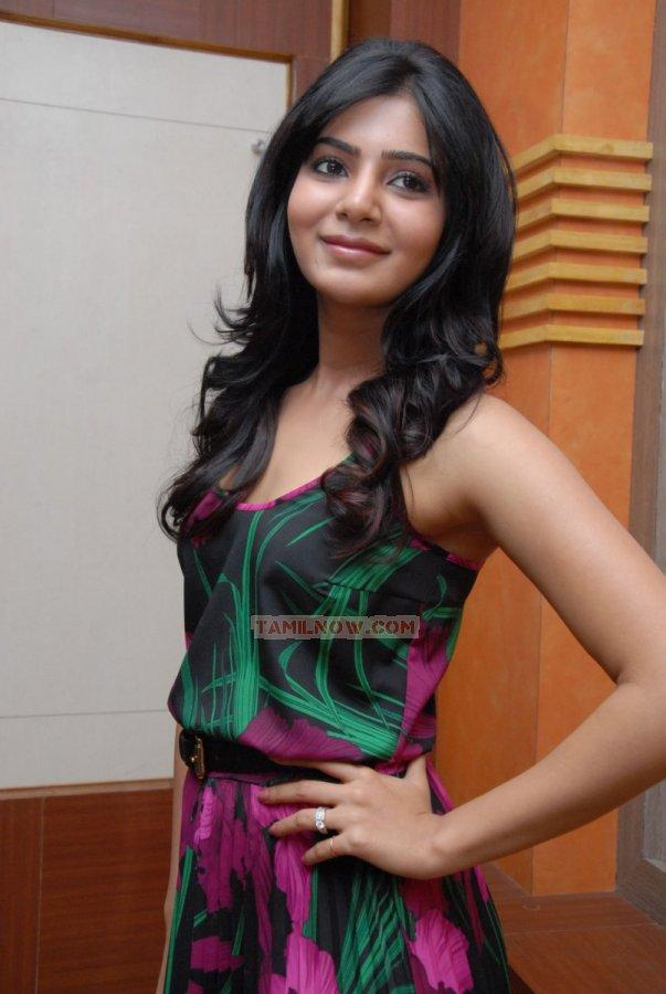 Tamil Actress Samantha 5895