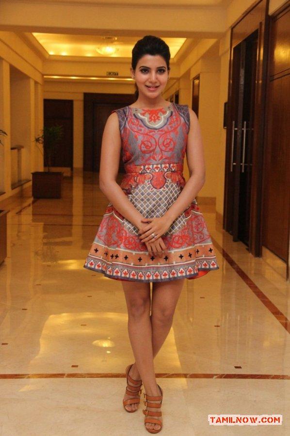 Tamil Actress Samantha 6229
