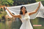 Indian Actress Sanam Recent Galleries 6397