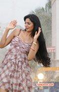 Pictures Tamil Movie Actress Sanam 2077