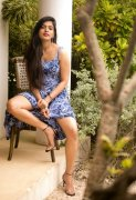 Jan 2021 Stills Sanchita Shetty Tamil Actress 2087