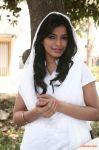 Sanchita Shetty 3871