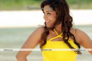 Tamil Actress Sandhya Photo6