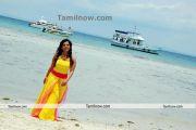 Tamil Actress Sandhya Photo8