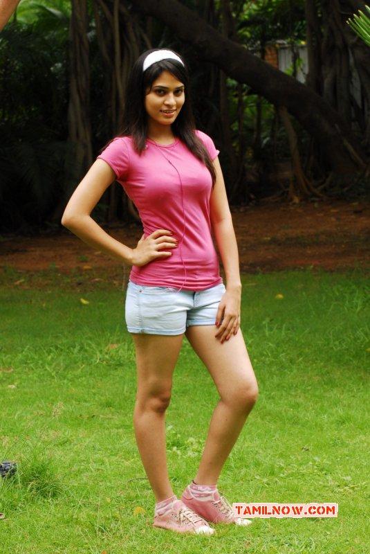 Aug 2015 Stills Tamil Actress Saneya Thara 5945