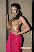 2016 Stills Cinema Actress Sanjana Galrani 3786