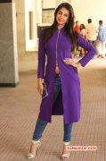 2016 Wallpaper Sanjana Galrani Tamil Movie Actress 2404